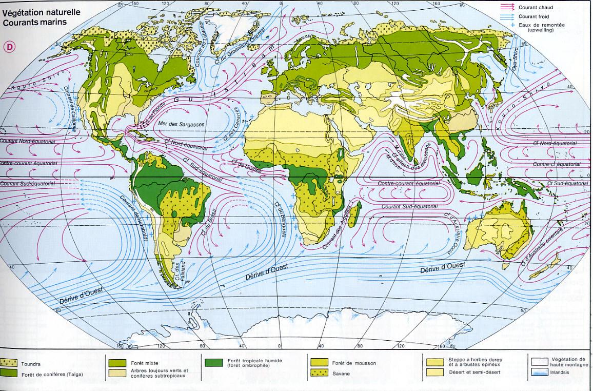 http://www.alertes-meteo.com/cartes/courants-marins.jpg